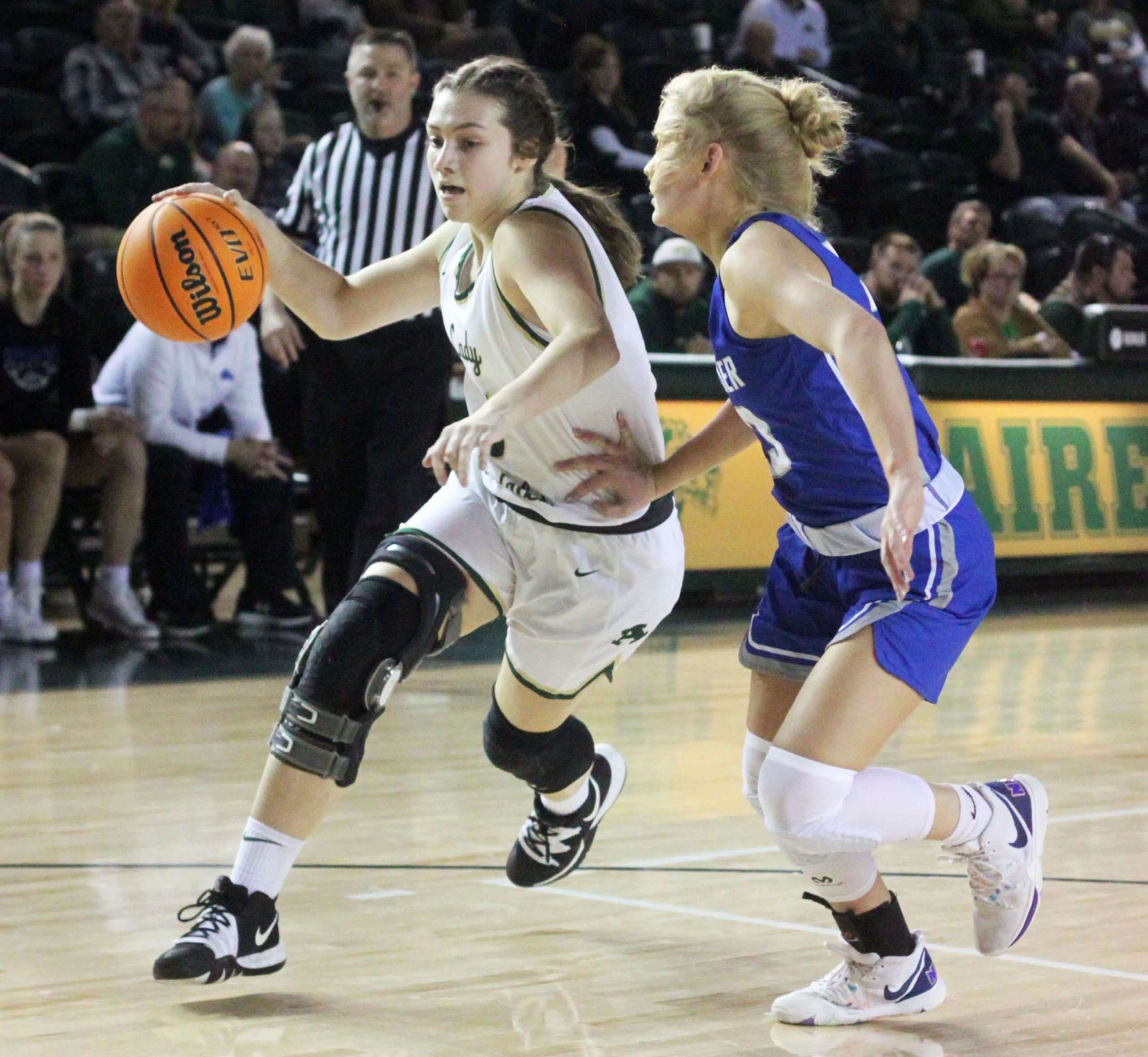 senior-leadership-fuels-lady-airedales,-69-46-–-helena-daily-world